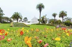 Conservatório das flores, San Francisco Fotografia de Stock Royalty Free