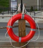 Conservateur de vie accrochant sur un poteau en bois Photo libre de droits