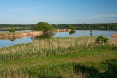 Conservation area Royalty Free Stock Image
