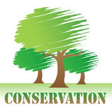 Conservation Trees Indicates Go Green And Eco Stock Photography