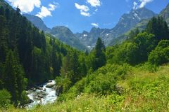 Conservation valley Royalty Free Stock Image