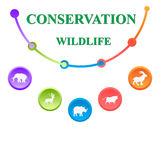 Conservation of the wildlife Stock Images