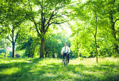 Conservative Businessman in the Forest Stock Images
