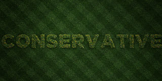 CONSERVATIVE - fresh Grass letters with flowers and dandelions - 3D rendered royalty free stock image. Can be used for online banner ads and direct mailers Stock Images
