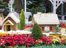 Conservatoire d'hôtel de Bellagio et jardins botaniques Photo stock
