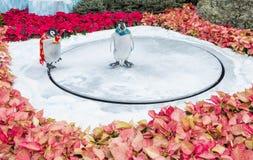 Conservatoire d'hôtel de Bellagio et jardins botaniques Photos stock