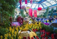 Conservatorio dell'hotel di Bellagio & giardini botanici Immagine Stock Libera da Diritti