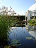 conservatory отражение бассеина Стоковые Фотографии RF