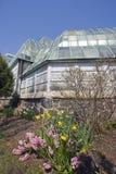 conservatory парк lincoln Стоковые Фотографии RF