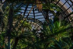 conservatory lizenzfreies stockfoto