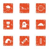Conservatory icons set, grunge style. Conservatory icons set. Grunge set of 9 conservatory vector icons for web isolated on white background Stock Photography