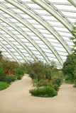 Conservatory Interior Stock Images