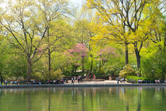 Conservatory Pond in Central Park stock image