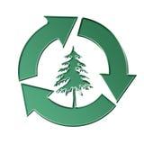 Conservazione degli alberi Fotografie Stock Libere da Diritti