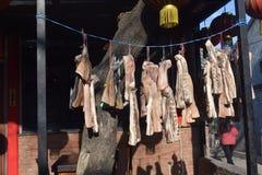 Conservazione della carne nello stile asiatico Hutongs a Pechino Immagine Stock