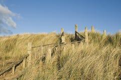 Conservazione della duna Fotografie Stock Libere da Diritti
