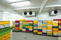 Conservazione frigorifera Fotografia Stock Libera da Diritti