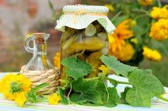 Conserve casalinghe Immagini Stock