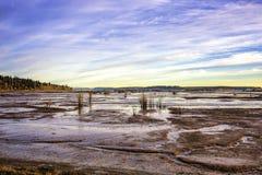 Conserve 1 de faune de Nisqualli d'appartements de marée image libre de droits