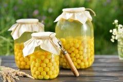 Conserve de fruits, compote de griottes photo stock