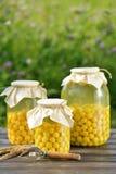 Conserve de fruits, compote de griottes photos stock