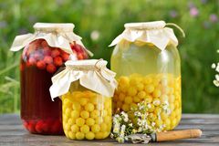Conserve de fruits, compote de griottes photographie stock libre de droits