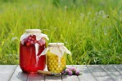 Conserve de fruits, compote de griottes images libres de droits