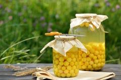 Conserve de fruits, compote de griottes image stock