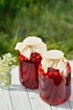 Conserve de fruits, compote de griottes photographie stock