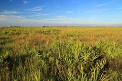 Conserve de prairie de Kissimmee image libre de droits