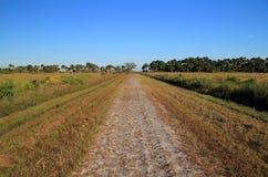 Conserve de prairie de Kissimmee Photographie stock libre de droits