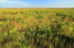 Conserve de prairie de Kissimmee Photos libres de droits