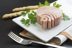Conserve de thon pour faire de la publicité Photographie stock