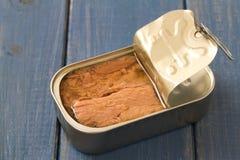 Conserve de thon sur le fond bleu image libre de droits