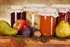 Conserve della frutta Fotografia Stock