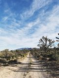 Conserve naturelle de Mojave Photo stock