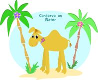 Conserve on Water Camel Stock Image
