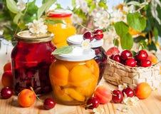Conserves de fruits et baies image stock