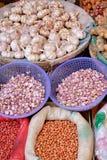 Conserves de légumes et ingrédients et Photographie stock libre de droits