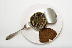 Conserves de poissons avec du pain noir Photos stock