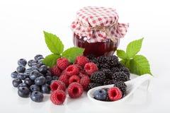 Conserves des fruits frais image libre de droits