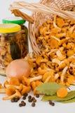 Conserves et des champignons de couche Photo stock