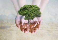 Conservi l'ambiente verde Fotografie Stock