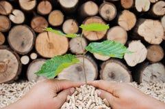 Conservi la natura Immagine Stock