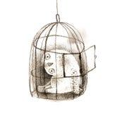 Considérer Milou Owl Sitting dans une cage à oiseaux Photographie stock libre de droits