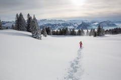 Consideravelmente, jovem mulher que snowshoeing nas montanhas altas fotos de stock royalty free