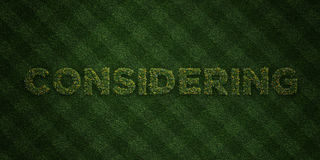 CONSIDERING - fresh Grass letters with flowers and dandelions - 3D rendered royalty free stock image. Can be used for online banner ads and direct mailers Stock Photography