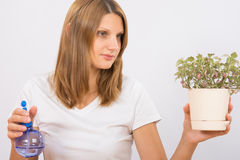 She considers the potted plants before humidification Stock Photos