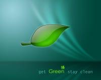Consiga el retén verde limpio Fotografía de archivo libre de regalías