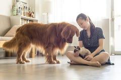 Consiga junto con gatos y los perros y las muchachas imagen de archivo libre de regalías